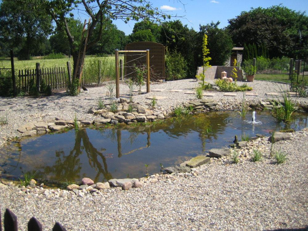 Der Teich in seiner vollen Pracht.